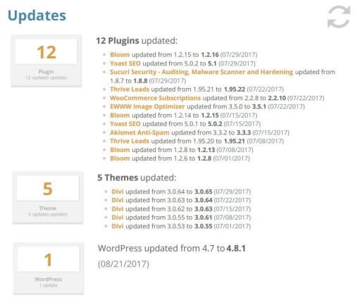Wordpress updates service plans