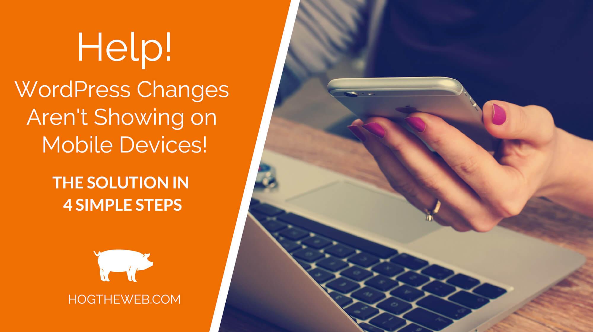 WordPress Changes